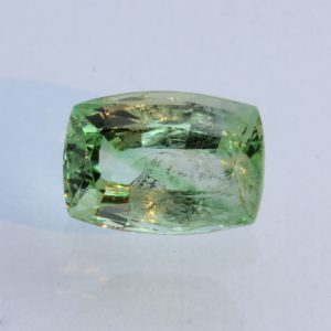 Tsavorite Mint Green Garnet Faceted Cushion Untreated Natural Gem 1.57 carat