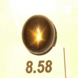Star Sapphire 11x9.5mm Oval Cab Thailand Untreated Six Point Natural 8.58 carat